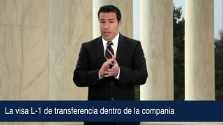 Video La visa L-1 de transferencia dentro de la compania