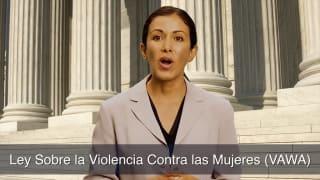 Ley Sobre la Violencia Contra las Mujeres VAWA