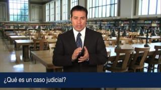 ¿Qué es un caso judicial?