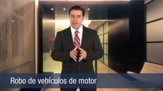 Video Robo de vehículos de motor